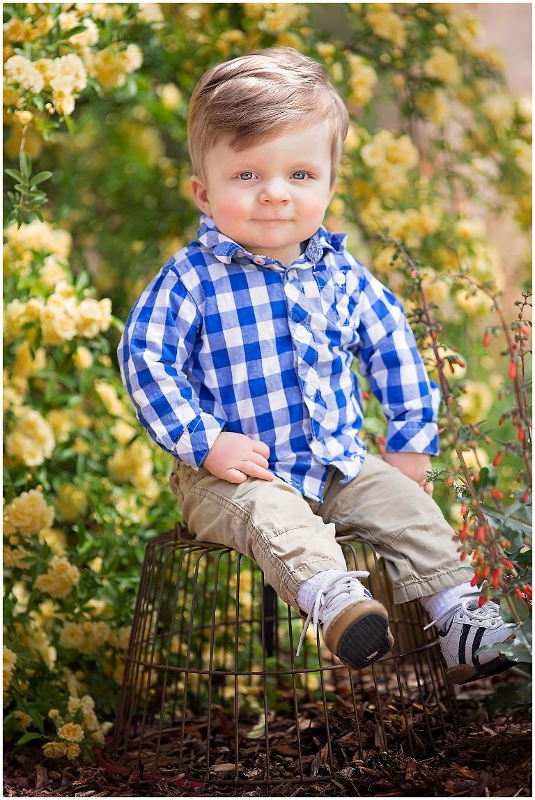 One year old boy birthday photographer